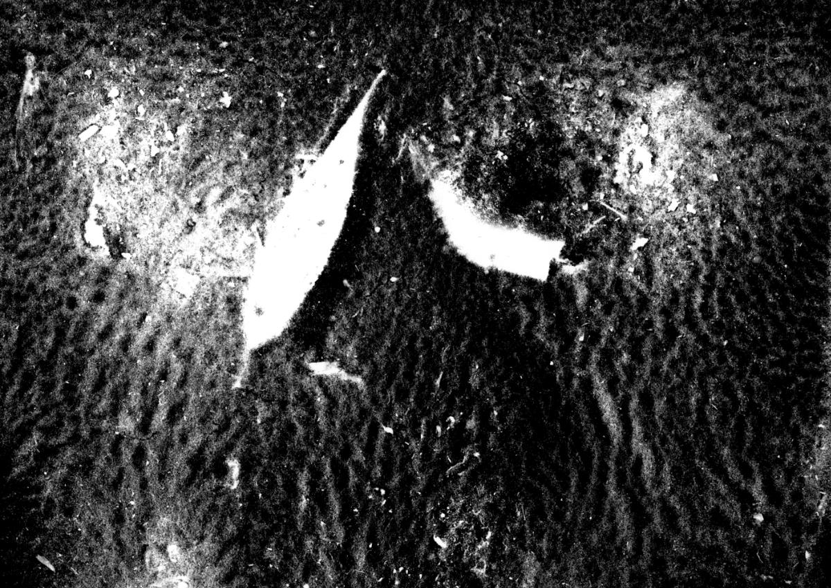 Fotogram vzorku vody